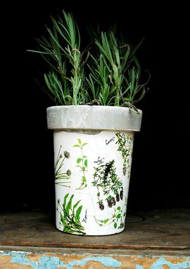 Herb Printed Pot