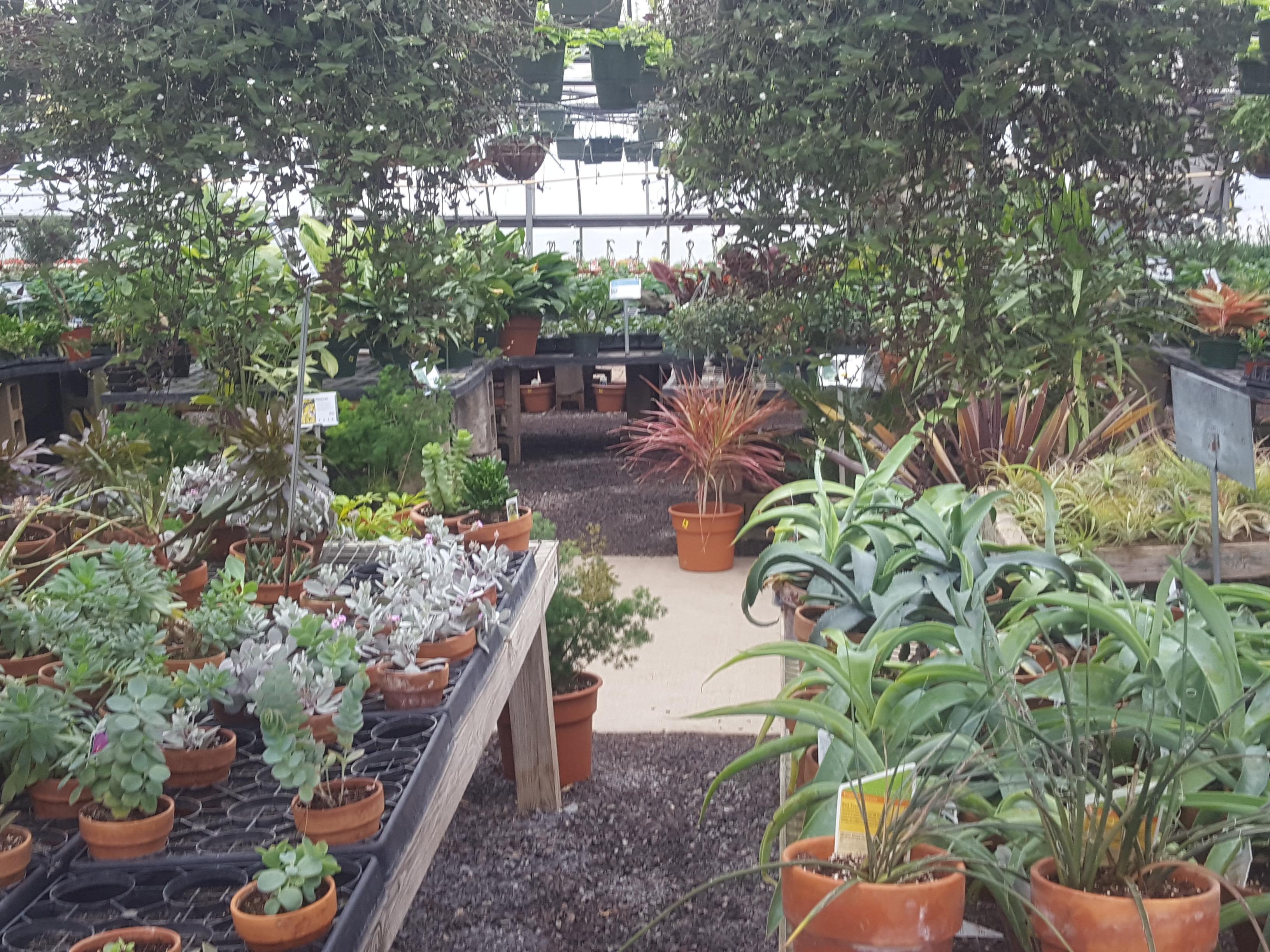 Quality Gardens